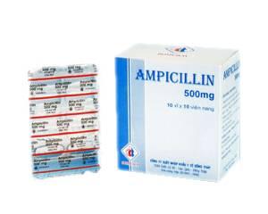 Kup Ampicylina
